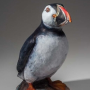 Puffin Seals 17_kw04919