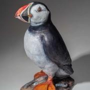 Puffin Seals 17_kw04924