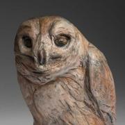 Raye-Owl-6-2014_kw08270