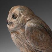 Raye-Owl-6-2014_kw08273