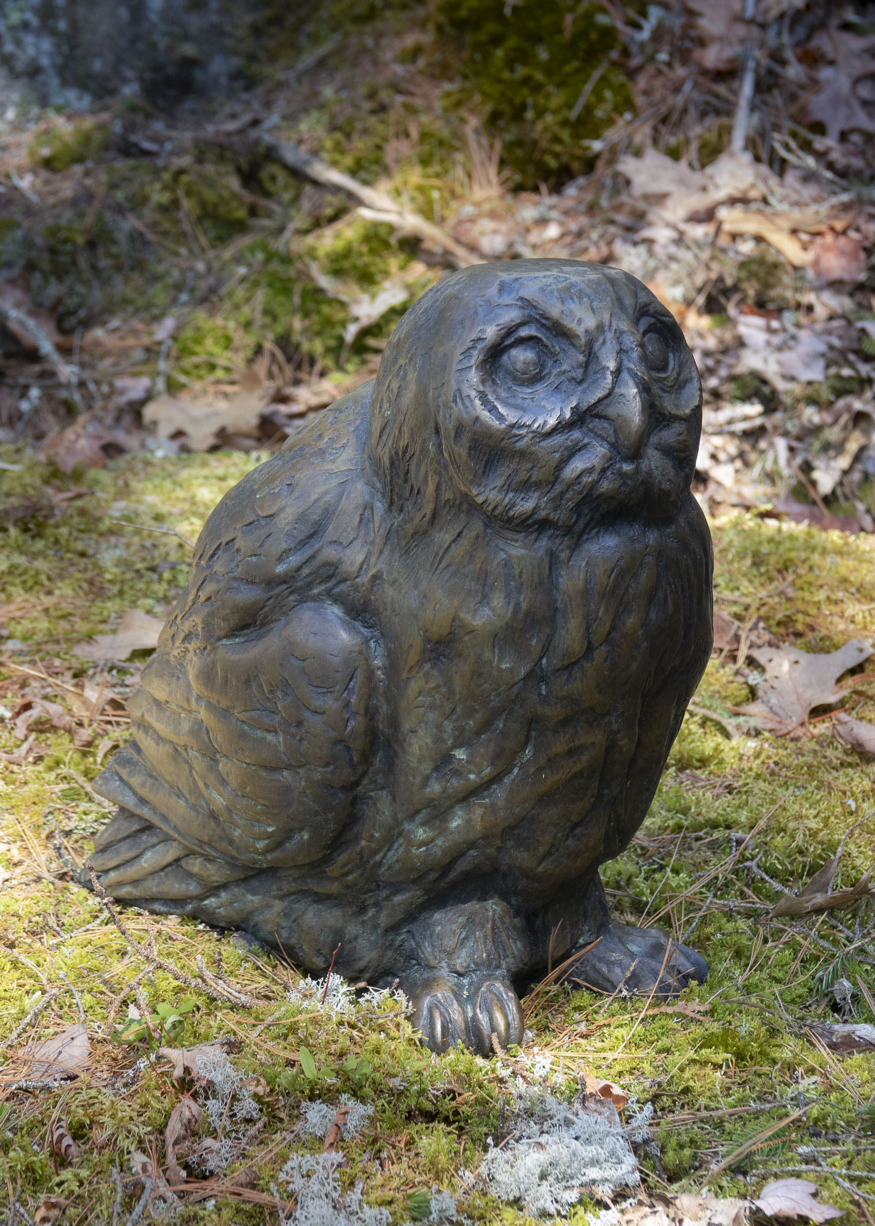 Raye-Owl-Seal-Rabbit-3-21_dsc3260