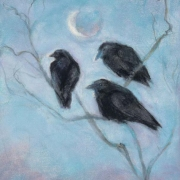 Early Morning Crows