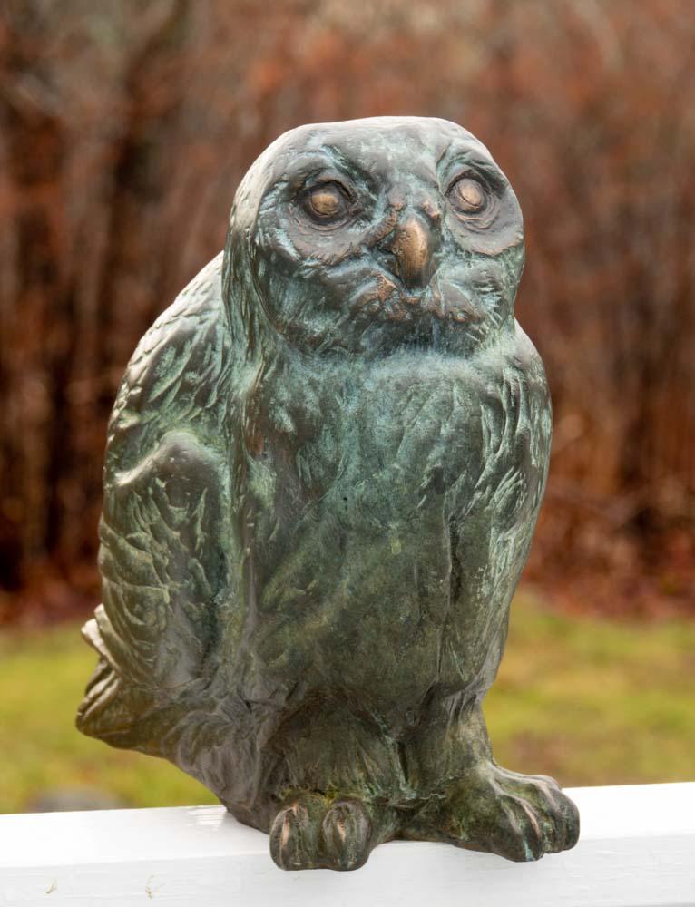 Bronze Owl 2019_dsc2607