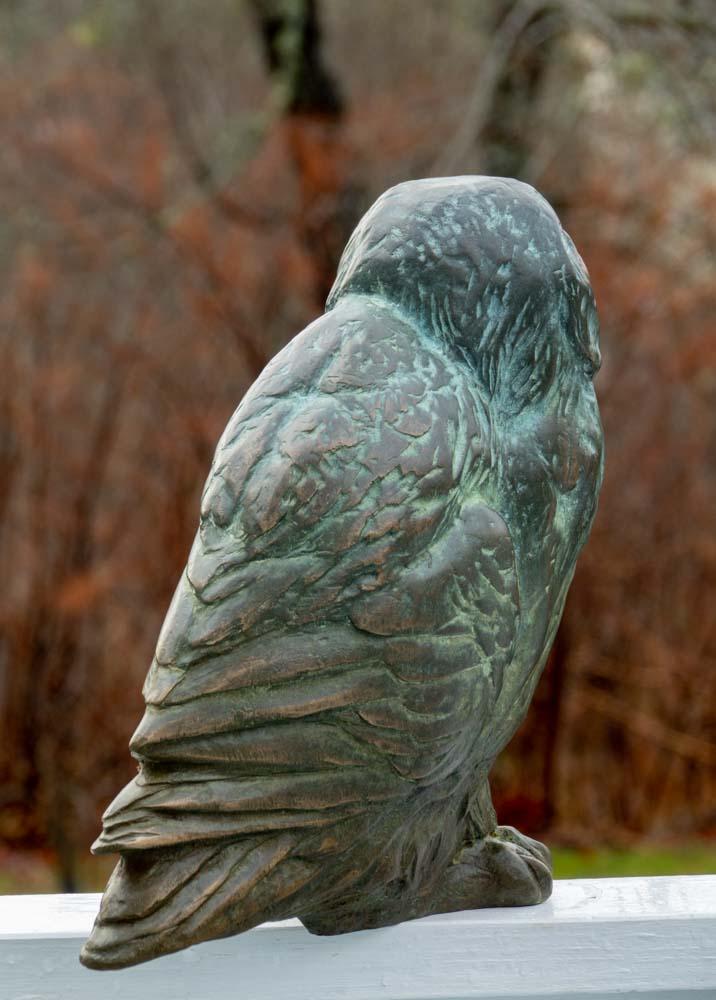 Bronze Owl 2019_dsc2609