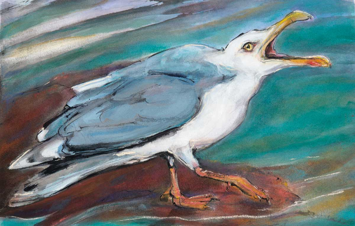 Squaking Gull<br />Artemis Gallery