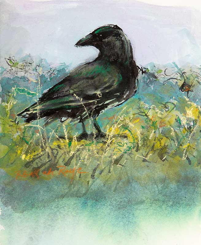 small-crow-in-field