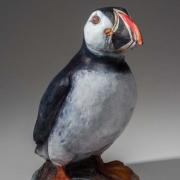 Puffin Seals 17_kw04919