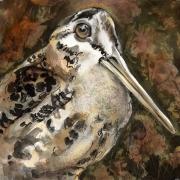 """Rebekah Raye-Timber Doodle-ink watercolor 18""""X18"""".jpg"""