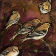 "Rebekha Raye-Goldfinch Family-ink watercolor-18""X18"".jpg"