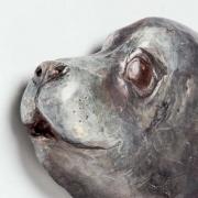 Seal-9-15_kw05397.jpg