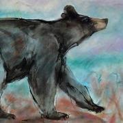 hungry_bear