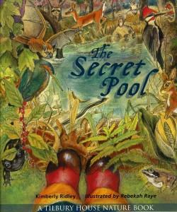 secret_pool_cover